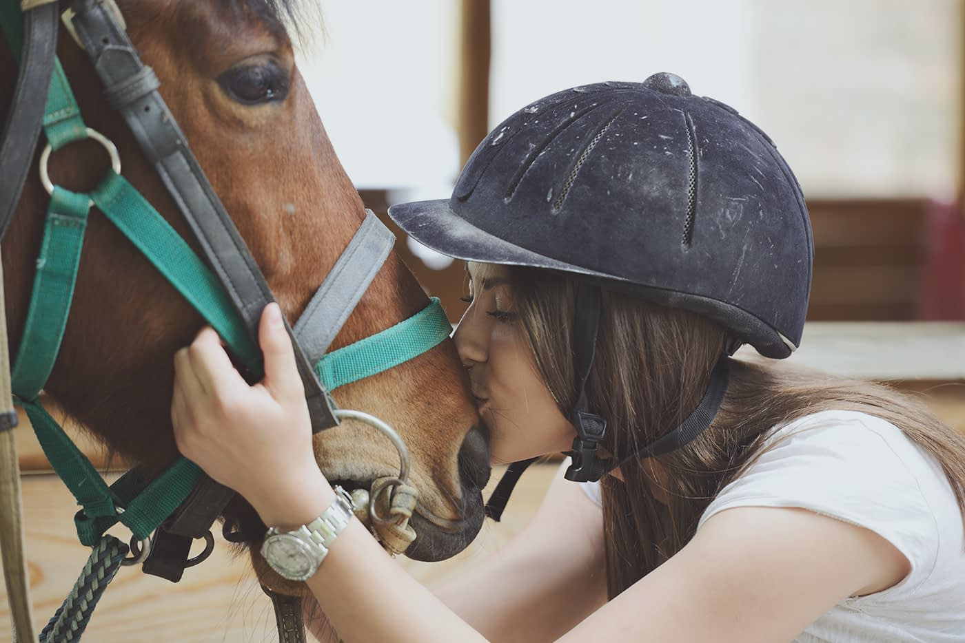 equestrian warredal